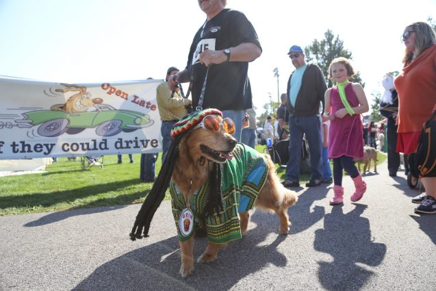 Spooky Pooch Parade presented by LakewoodAlive