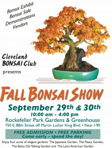 Cleveland Bonsai Club Fall Show