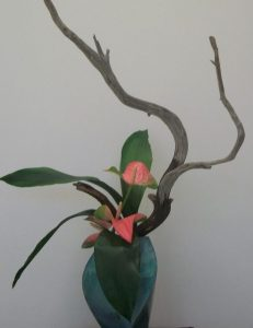 50 Years of Ikebana