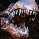 Think & Drink with the Extinct: Prehistoric Cleveland