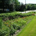 Implementing Green Infrastructure