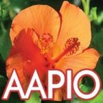 American Asian Pacific Islander Organization