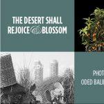 The Desert Shall Rejoice & Blossom: Gallery Open House