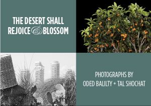 The Desert Shall Rejoice & Blossom: Gallery Open House