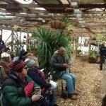 Urban Farming - First Class in Series