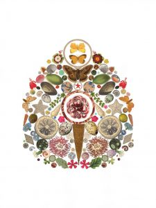 Dual Exhibition: Flourish + Know How