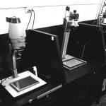 Film & Darkroom Basics Workshop