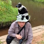 African Safari 101: Supporting Wildlife Conservation through Ecotourism with Alex Shaland