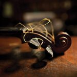 Revisiting Violins of Hope: A Conversation with Photographer Daniel Levin
