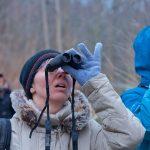 Audubon Birding Walks