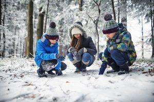 Homeschool Program: Winter Garden Bird Explorer