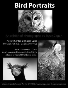 Bird Portraits--a photography exhibition at the Nature Center at Shaker Lakes