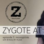 Zygote at Home