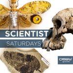 Scientist Saturday
