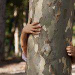 Nature Story Time: TREE-mendous FUN!
