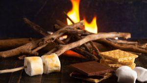 Virtual: Family Campfire Night