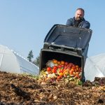 Sustainability at Home: Food Waste: The Biggest Problem We Can Solve