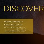 Discover-E: The Sky is Fall'n with the Astronomy Department