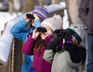 Guided Birding Walks