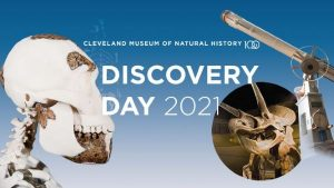 Discovery Day: Meet the Dinosaurs