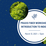 Praxis Fiber Workshop: Introduction to Indigo