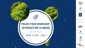 Praxis Fiber Workshop: Introduction to Indigo