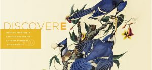 DiscoverE: Bird is the Word: An Evening with Gary Meiter