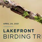 Lakefront Birding Trip