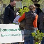 Homegrown Plant Sale