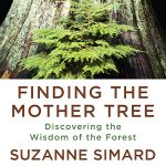 DiscoverE: Finding the Mother Tree: An Evening with Dr. Suzanne Simard