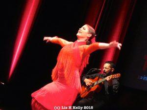 ABREPASO flamenco