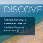 DiscoverE: On the Threshold of the Great Lakes
