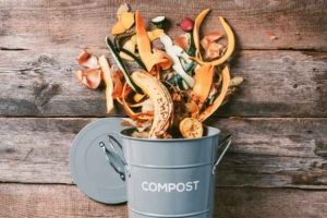 How to Compost with Worms 101
