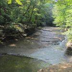 West Creek Conservancy