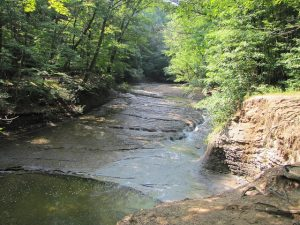West Creek Conservancy